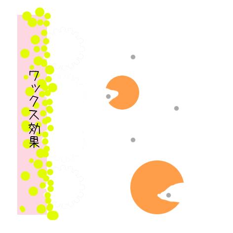 senjyo_4.jpg